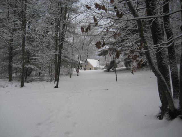 shop in snow