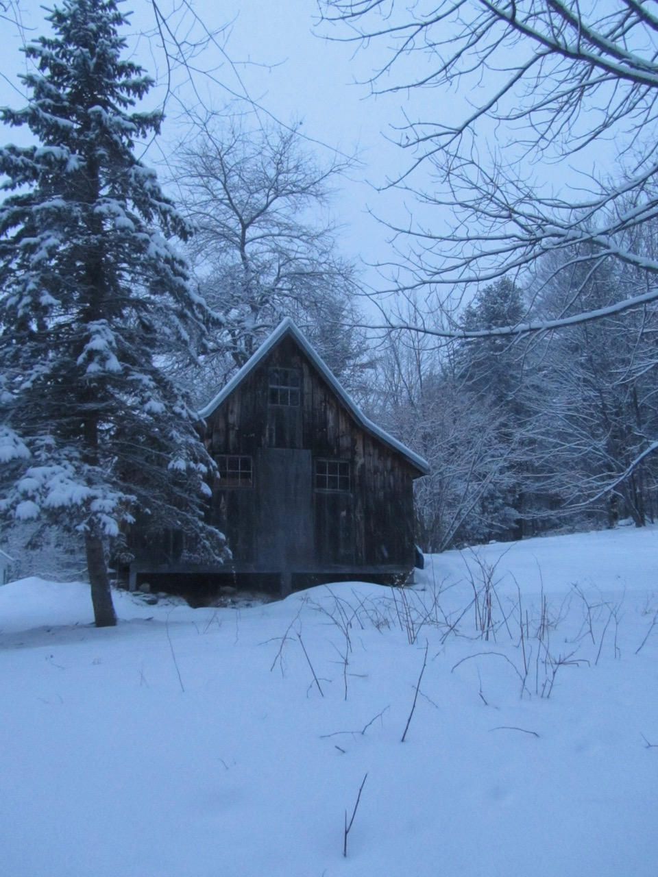 Exceptional Like A Fresh Coating Of Snow, The New Year Always Holds Endless  Possibilities. January Was Quite A Mix Of Weather, From Extreme Cold, To  Snow, Rain, Ice, ...
